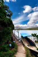 djungeln i Vietnam foto