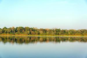 sjö- och djungelreflektion foto