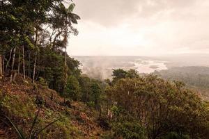 amazon djungel, Sydamerika foto