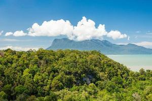 tropiskt landskap över djungeln och kullarna foto