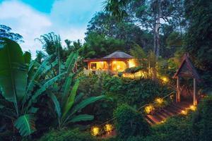 tropiskt hem i djungeln vid solnedgången foto