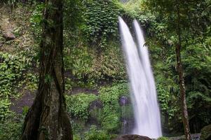 höga tropiska vattenfall i djungeln, nära senaru, lombok, ind foto