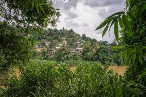 husen bland djungeln på flodstranden. foto
