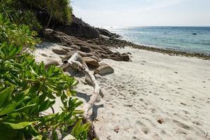 havet och djungeln på tarutao national marinpark foto
