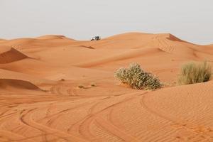 arabiska öknen
