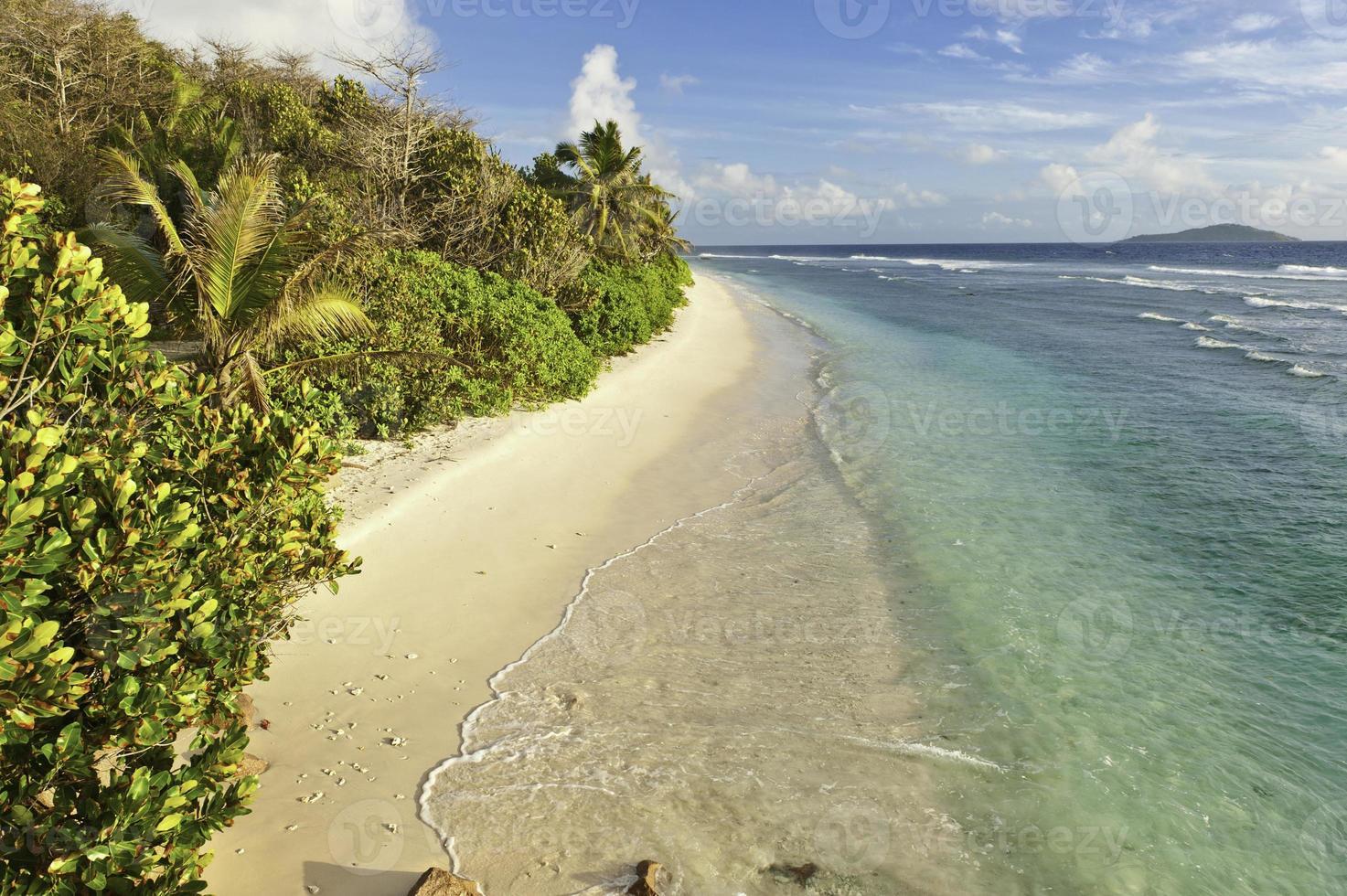 verlaten tropisch eiland strand turquoise oceaan lagune palmbomen foto