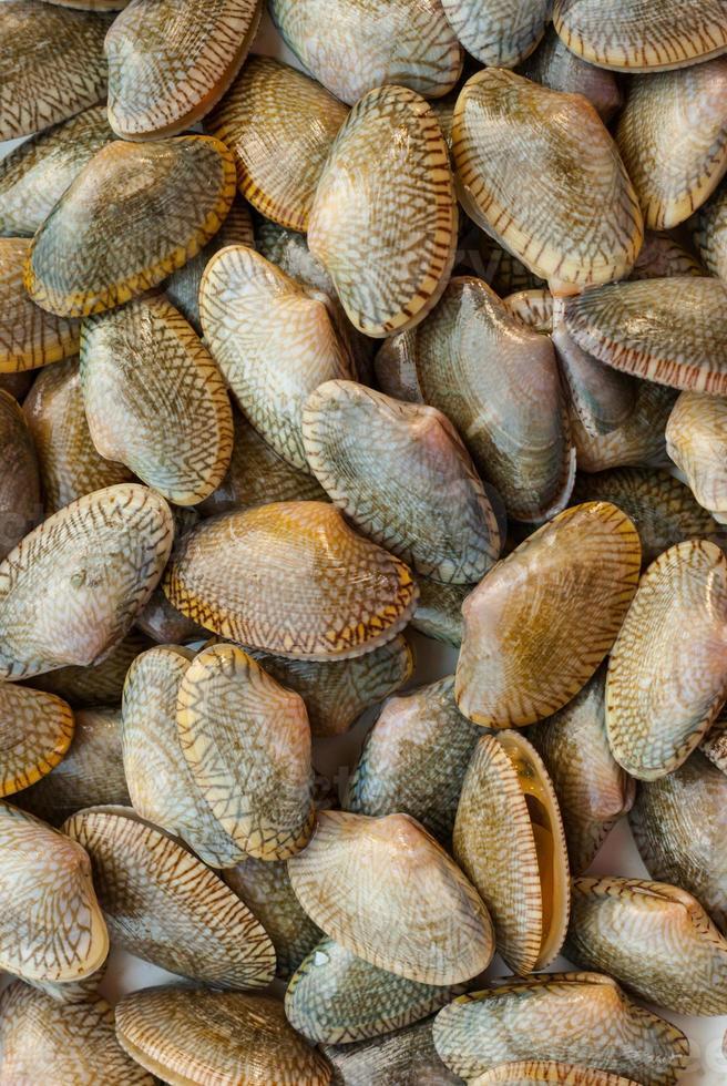 eetbare mosselen op de Belgische vismarkt foto