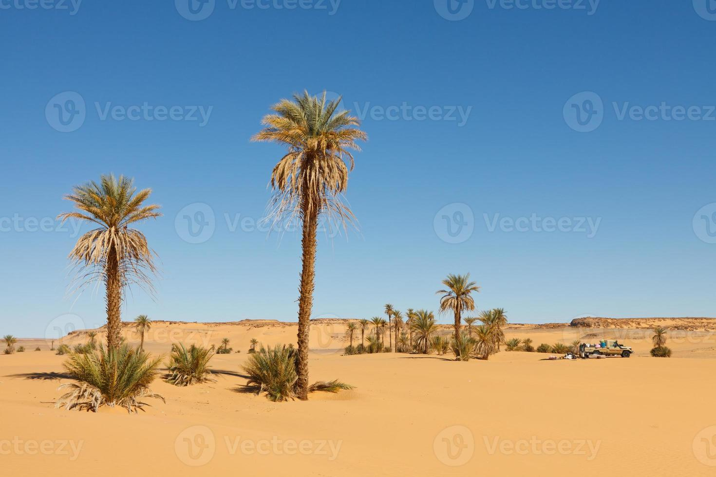 vrachtwagen in de woestijn foto