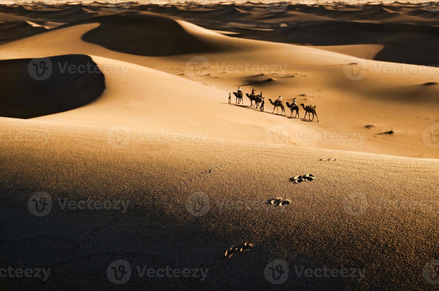 caravan in de woestijn foto
