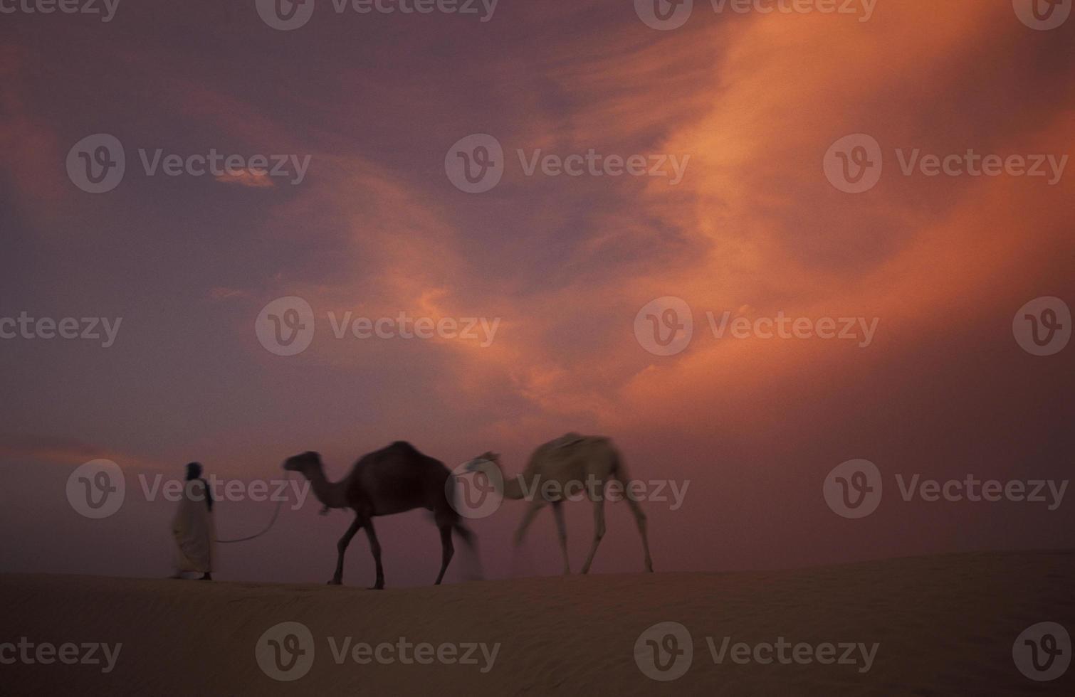 Tunesië Sahara Douz foto