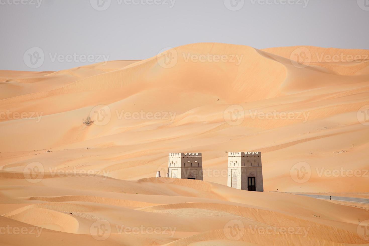 poort naar de liwa-woestijn foto