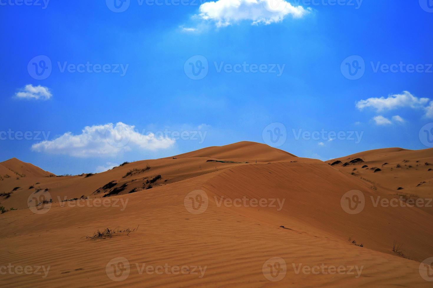 woestijn van Arabië foto