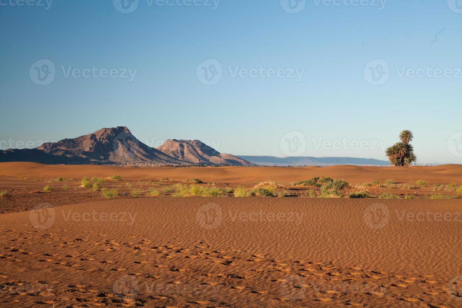 Edje van de woestijn foto