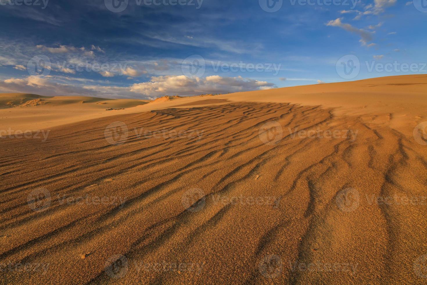 prachtig uitzicht op de Gobi-woestijn. Mongolië. foto