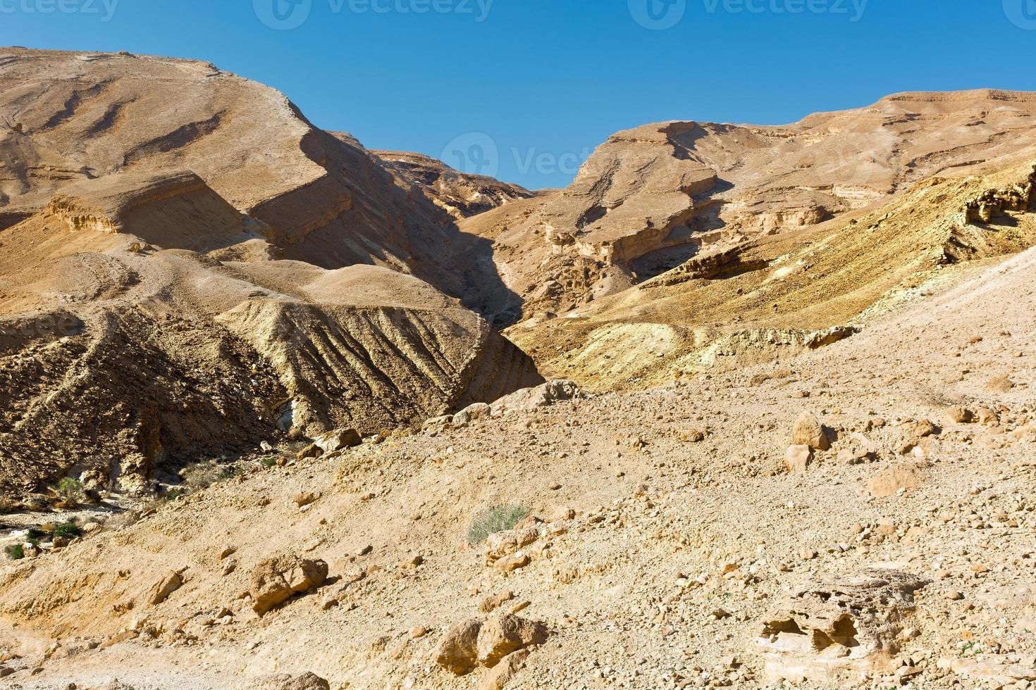 israël woestijn foto