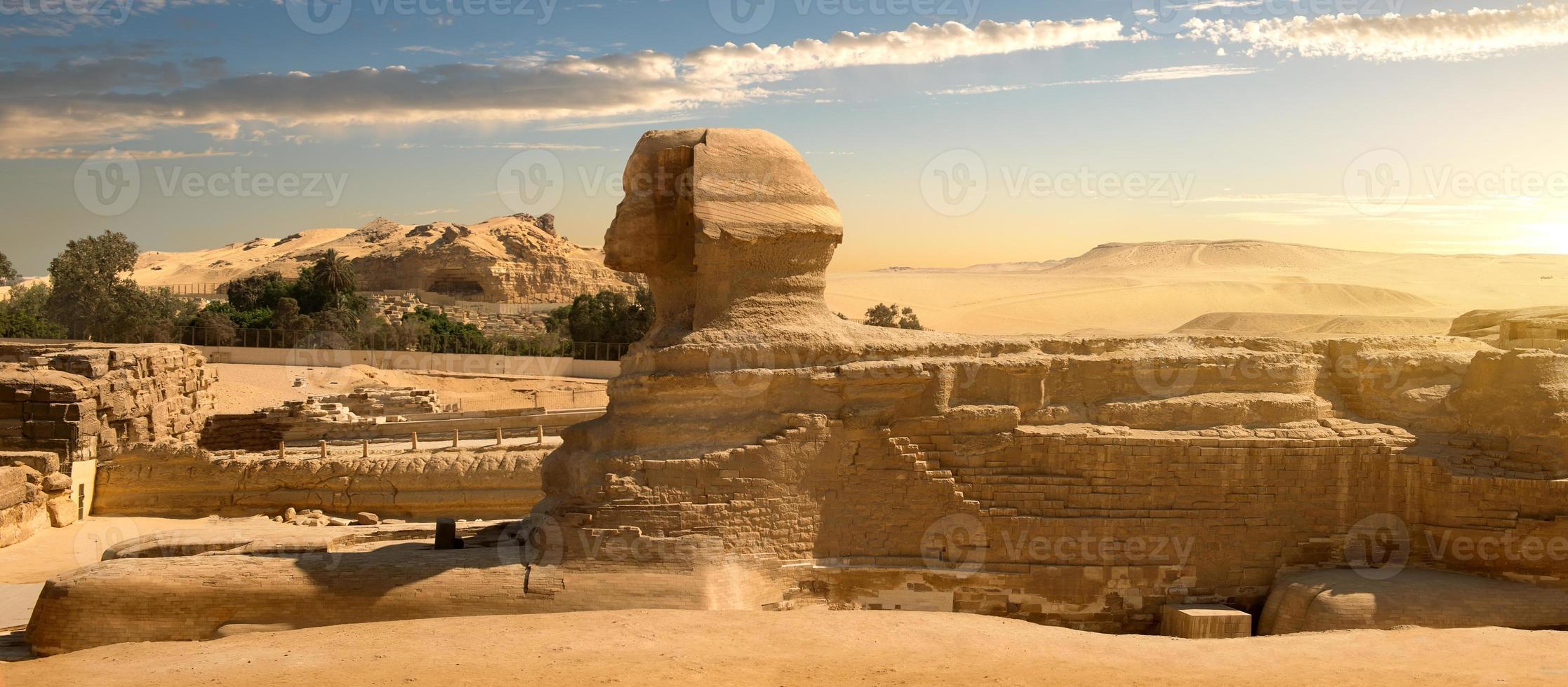 sfinx in woestijn foto