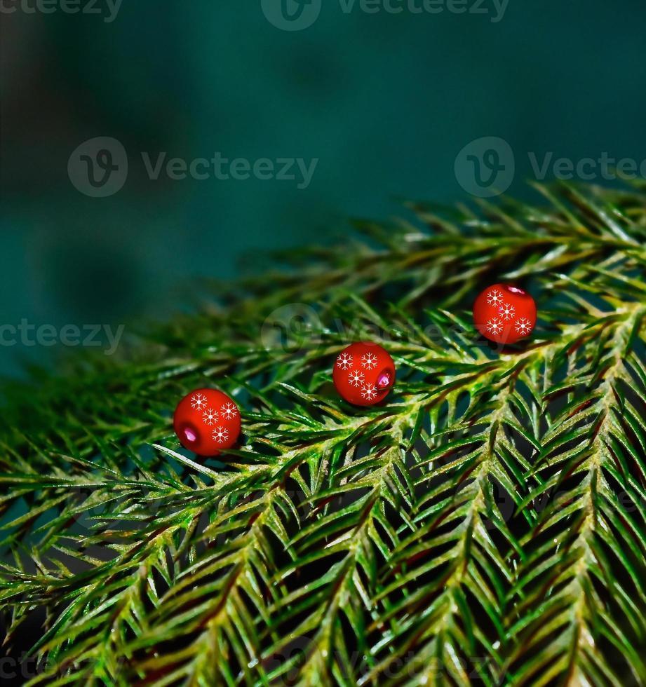 rood voorwerp & groene planten - voorraadbeeld foto