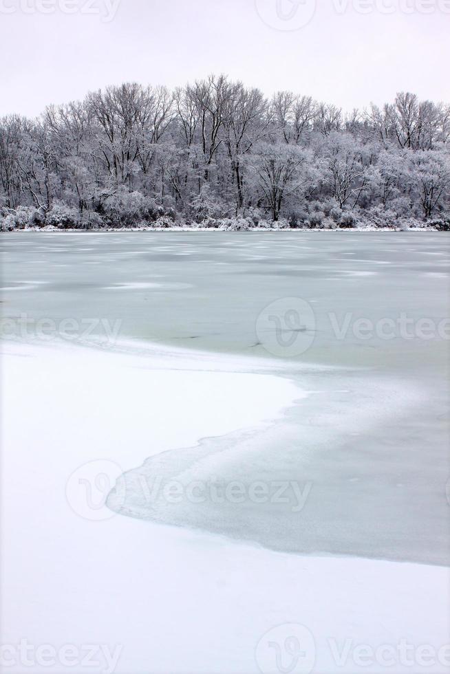 pierce lake sneeuwval Illinois foto