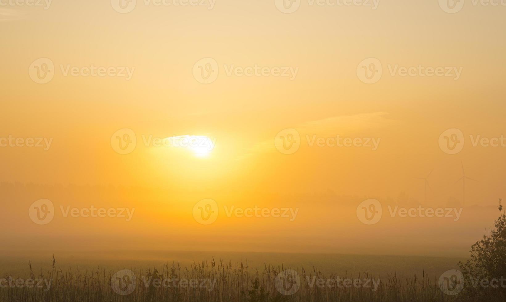 zonsopgang boven een mistig landschap in het voorjaar foto
