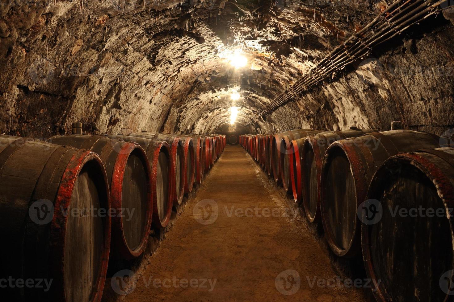 wijnkelder foto