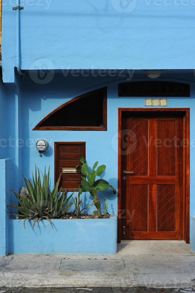 bruine deur foto