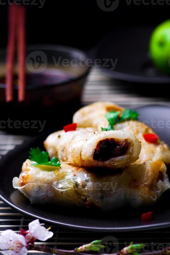 gebakken loempia's. foto