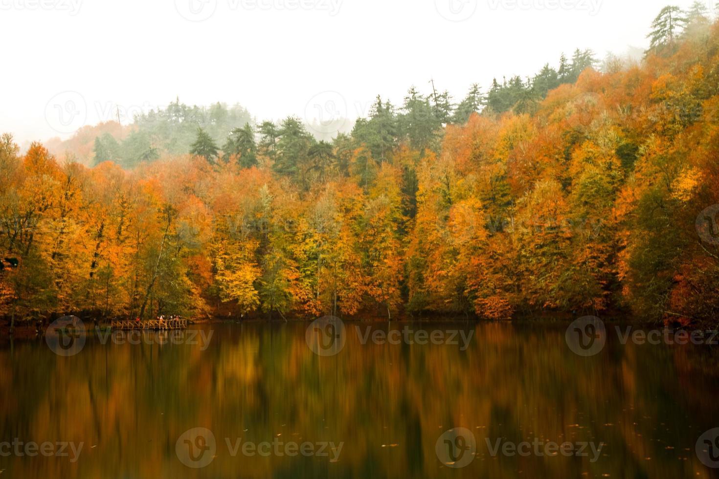 Nationaal Park foto