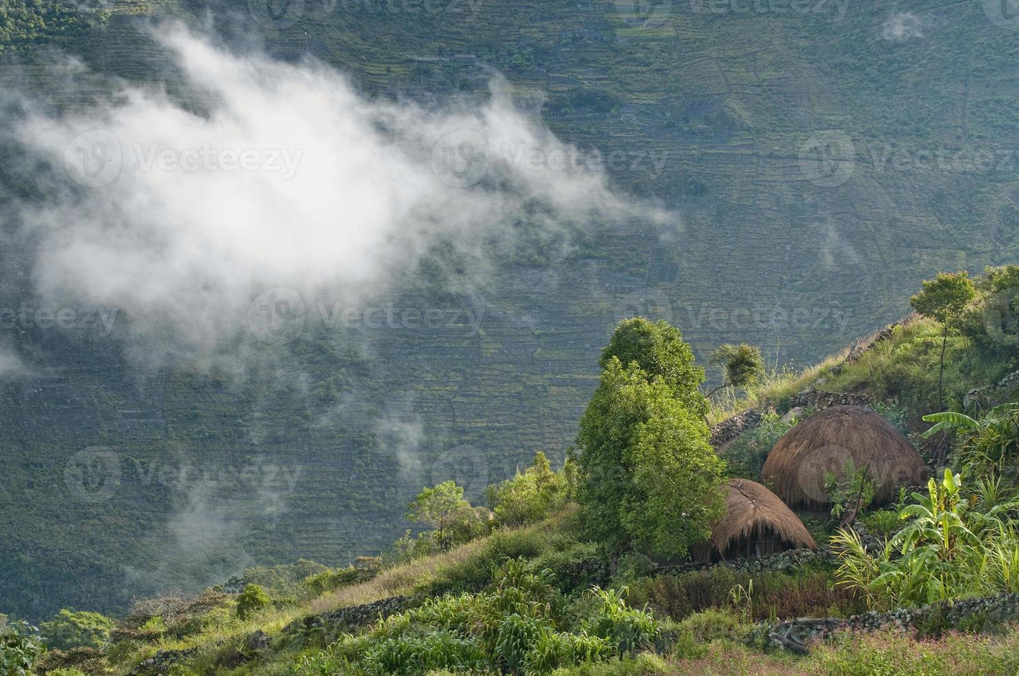 traditionele hutten in papua foto