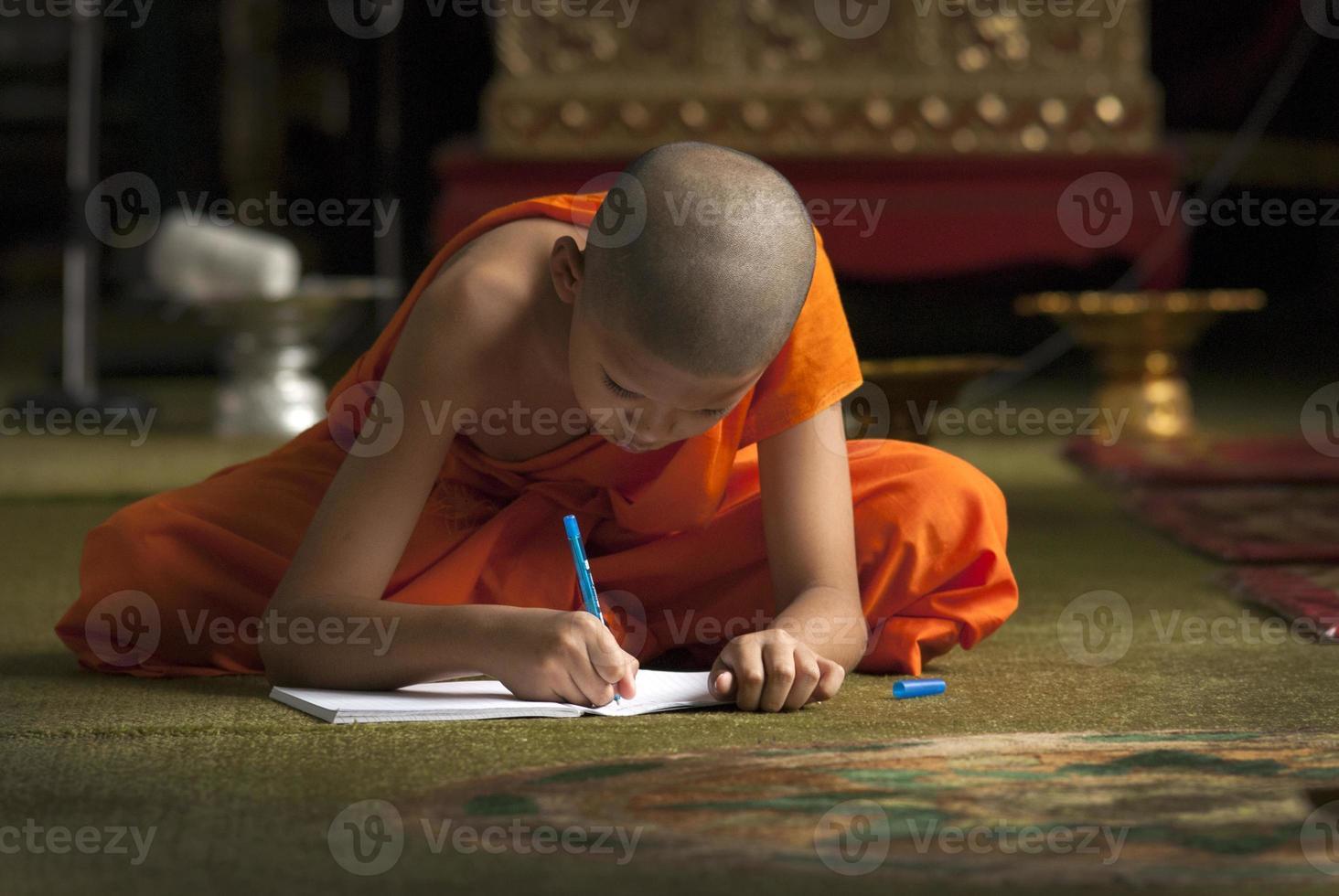 jonge monniken foto