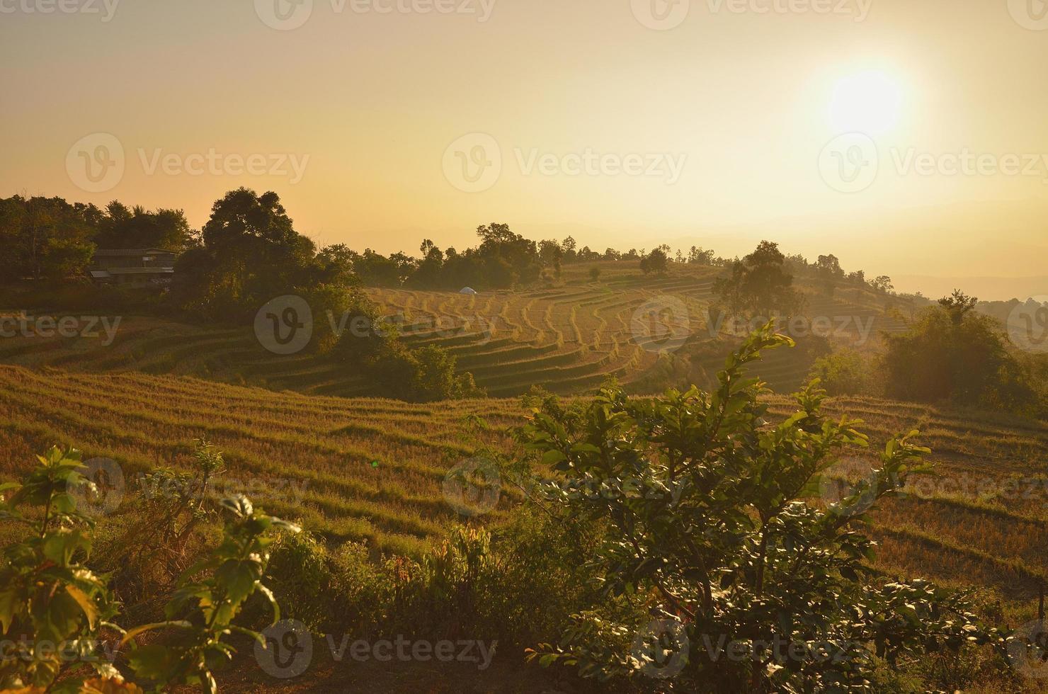 rijstterras in Maechaem in Thailand foto