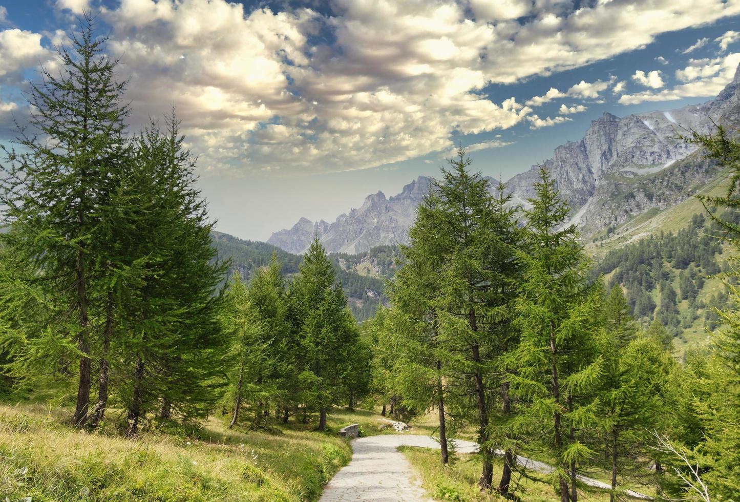 zicht op een alpenlandschap foto