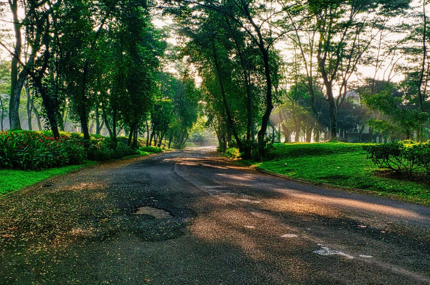 zonneschijn op de weg foto