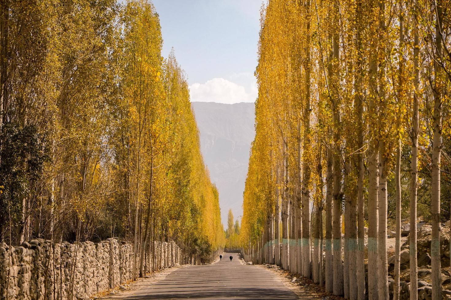 weg naar khaplu in de herfst in ghowari dorp, pakistan foto