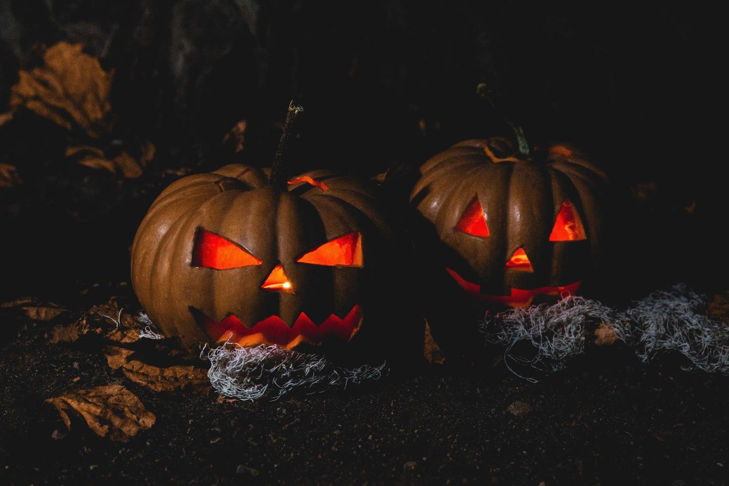 twee jack o'lantern lampen foto