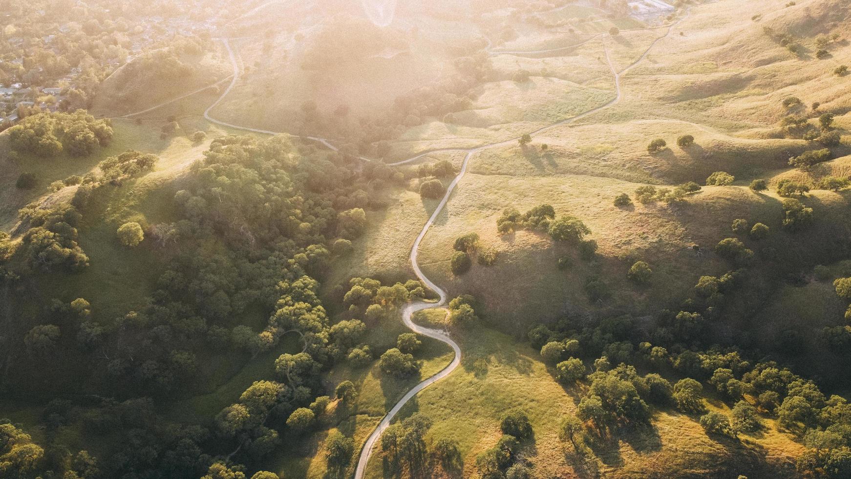 luchtfoto uitzicht over veld foto