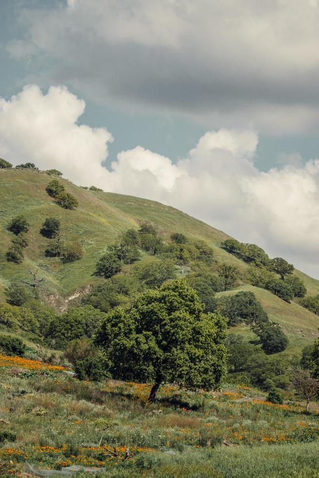 groene heuvels onder blauwe wolken foto
