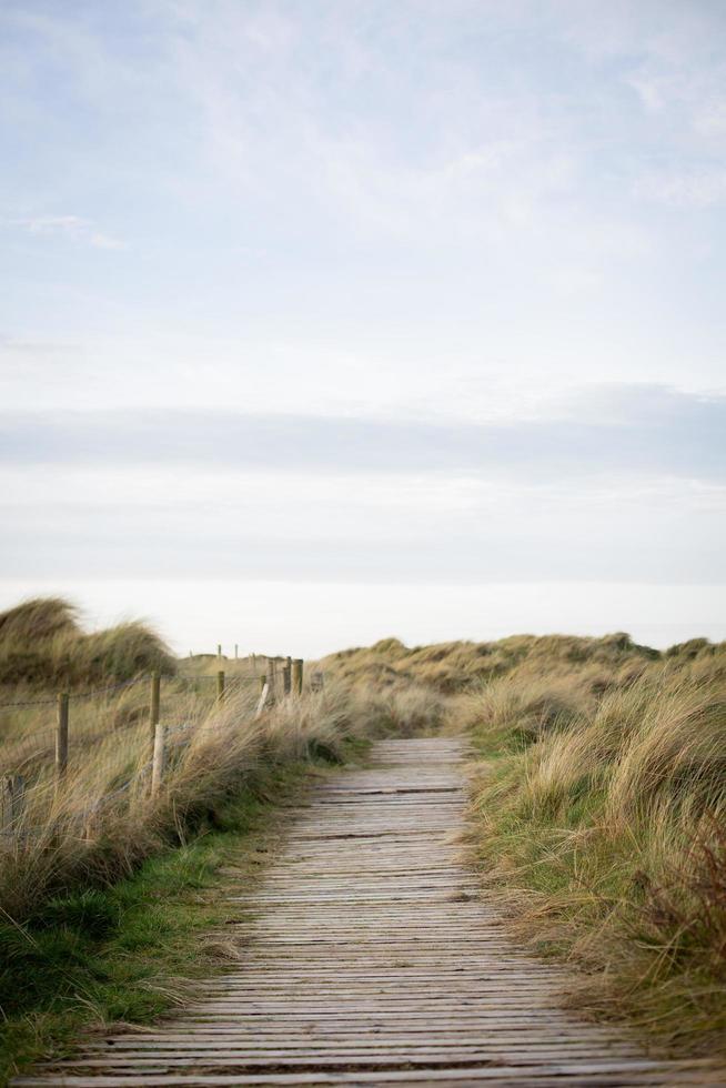 houten pad in de buurt van strand foto