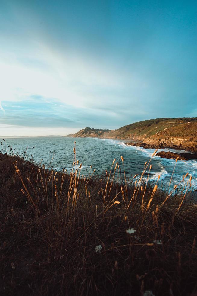 wilde en kleurrijke kust foto