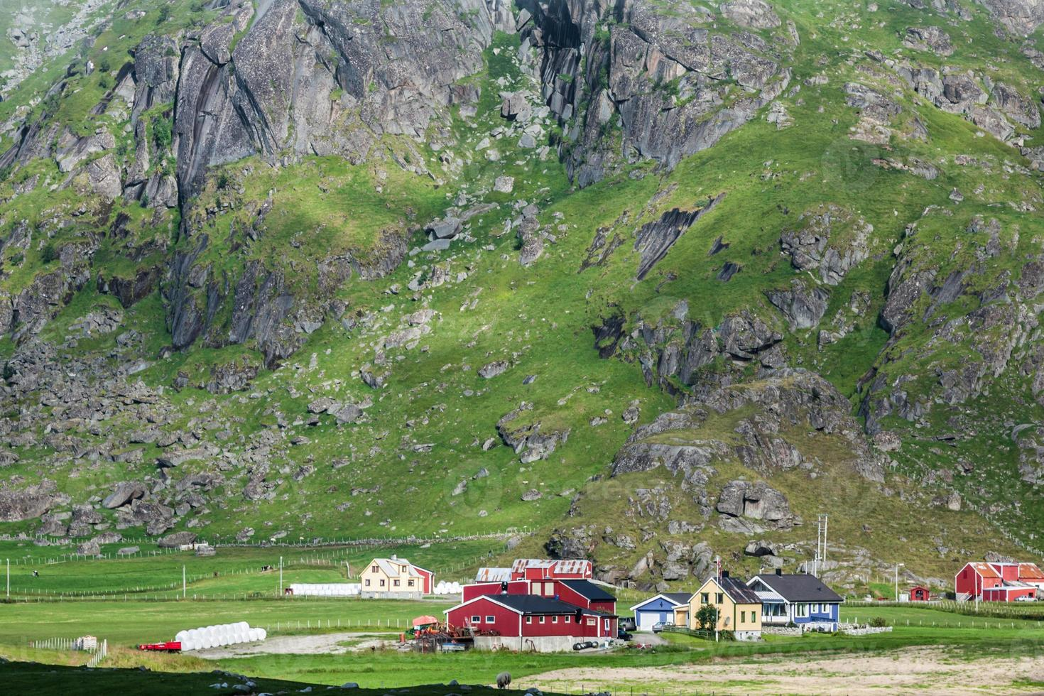 traditionele noorse kleurrijke huizen, lofoten-eilanden, noorwegen foto