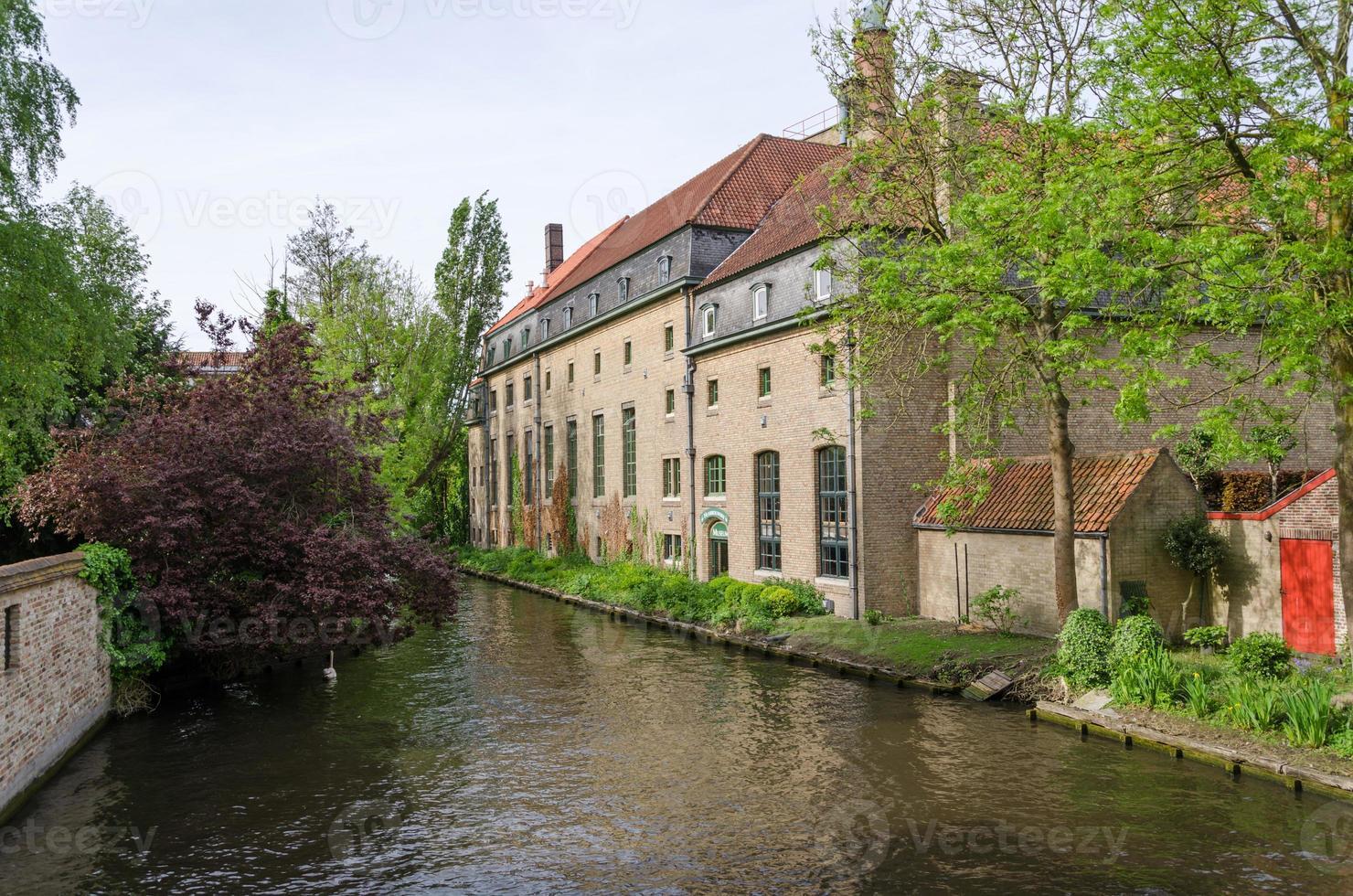 plas in begijnhof, stad Brugge foto