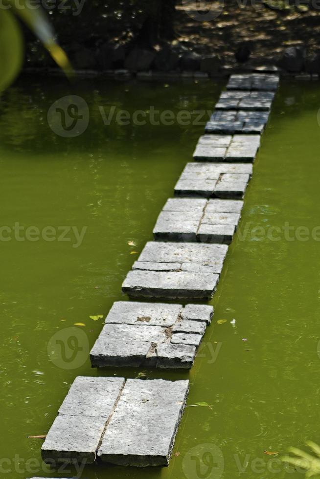 pasarela en un jardin japones foto