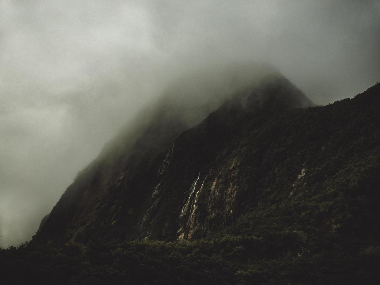mistige berg en bomen foto
