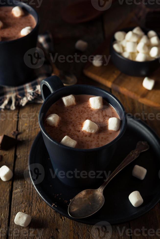 zelfgemaakte warme warme chocolademelk foto