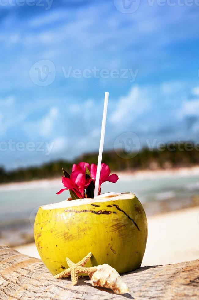 kokosnoten op het strand foto