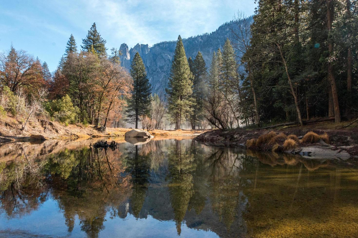 schilderachtig landschap van bomen die op water nadenken foto