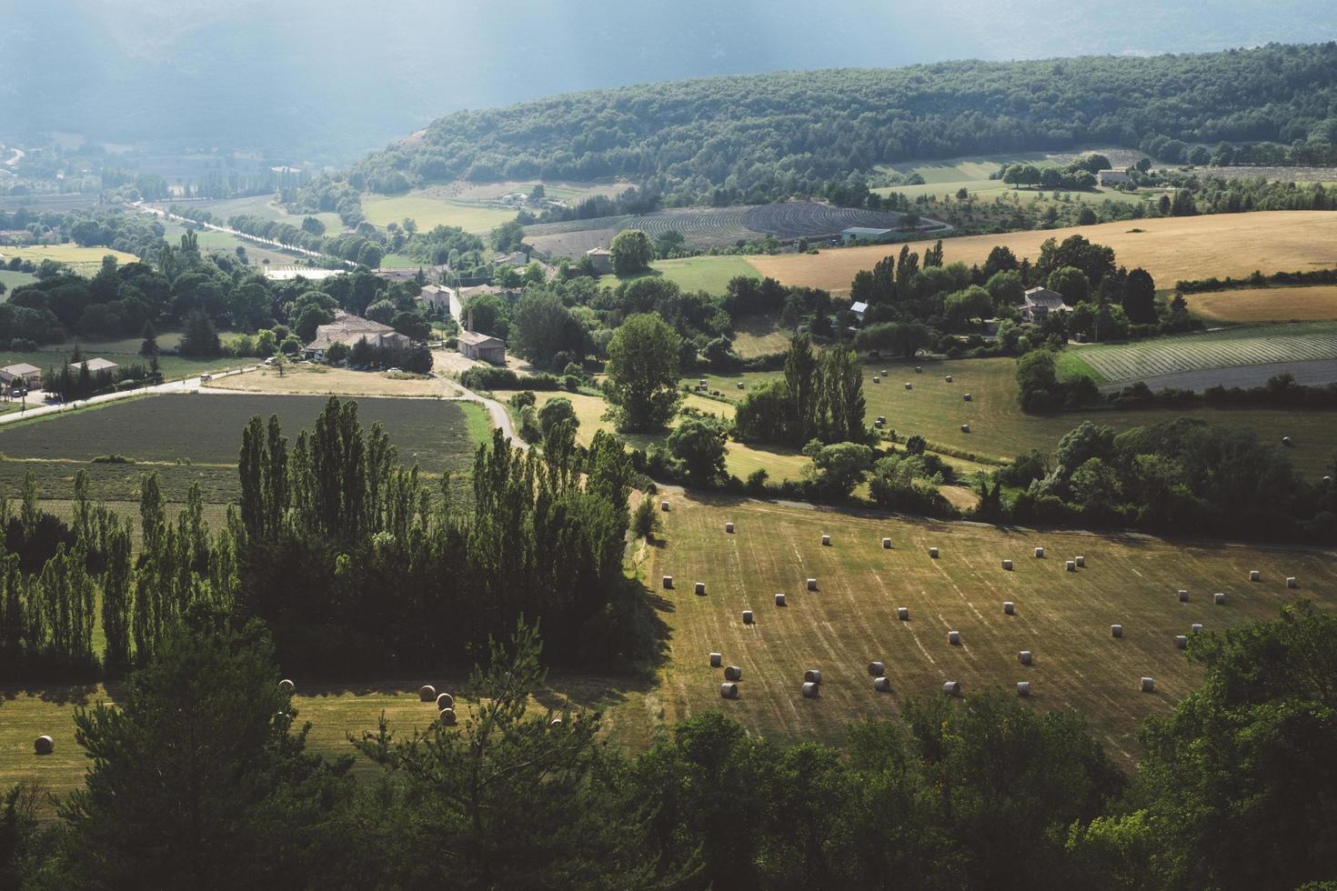 luchtfoto van bomen en boerderij foto