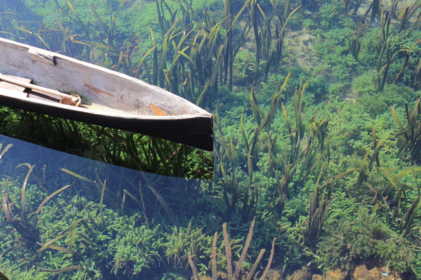 houten kano op waterlichaam foto