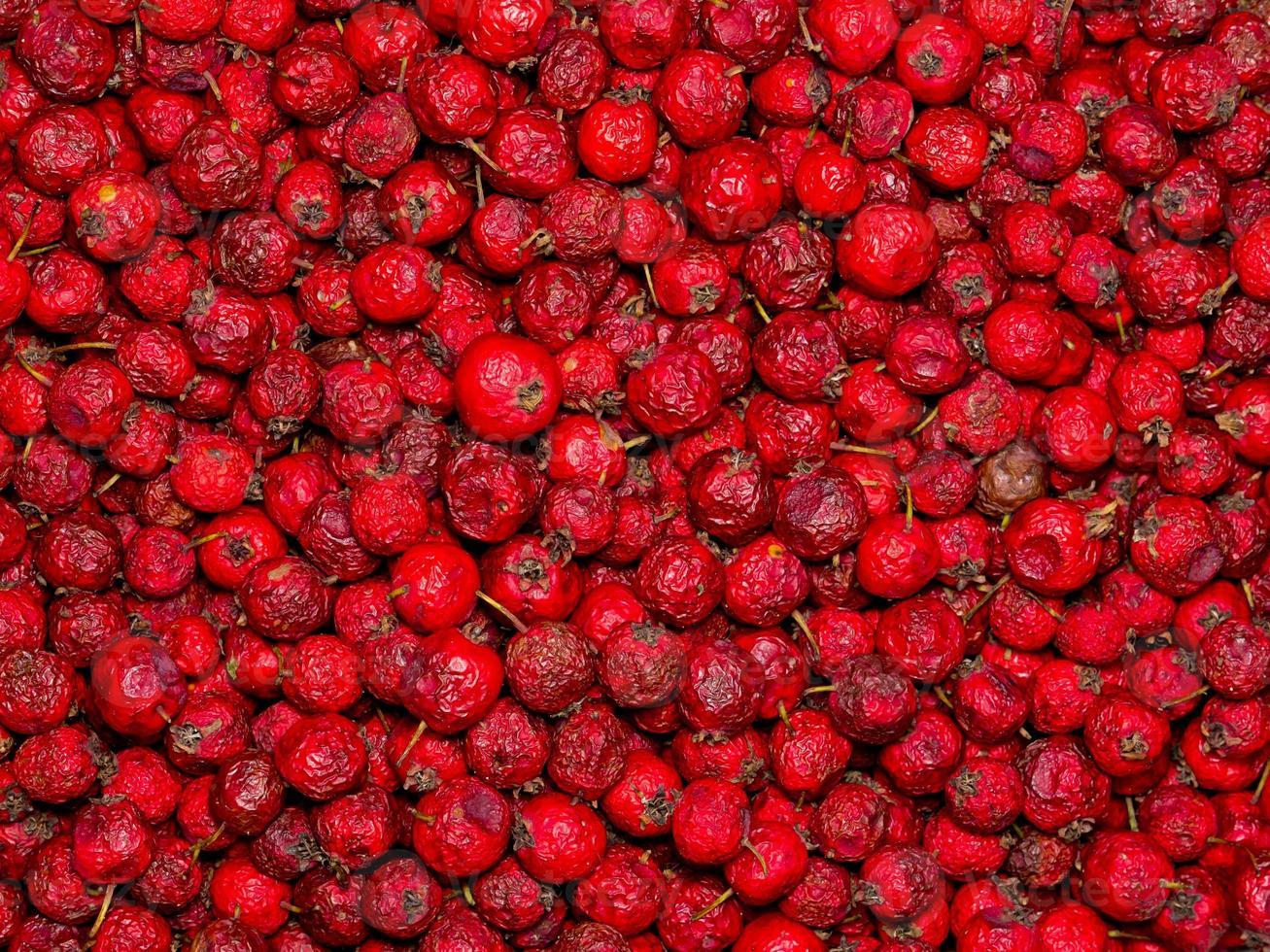 gedroogde rozenbottels. foto