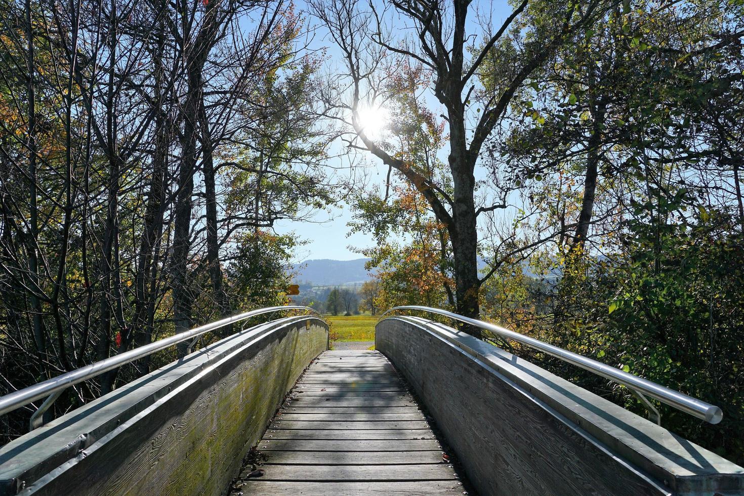 houten brug bij de greifensee foto