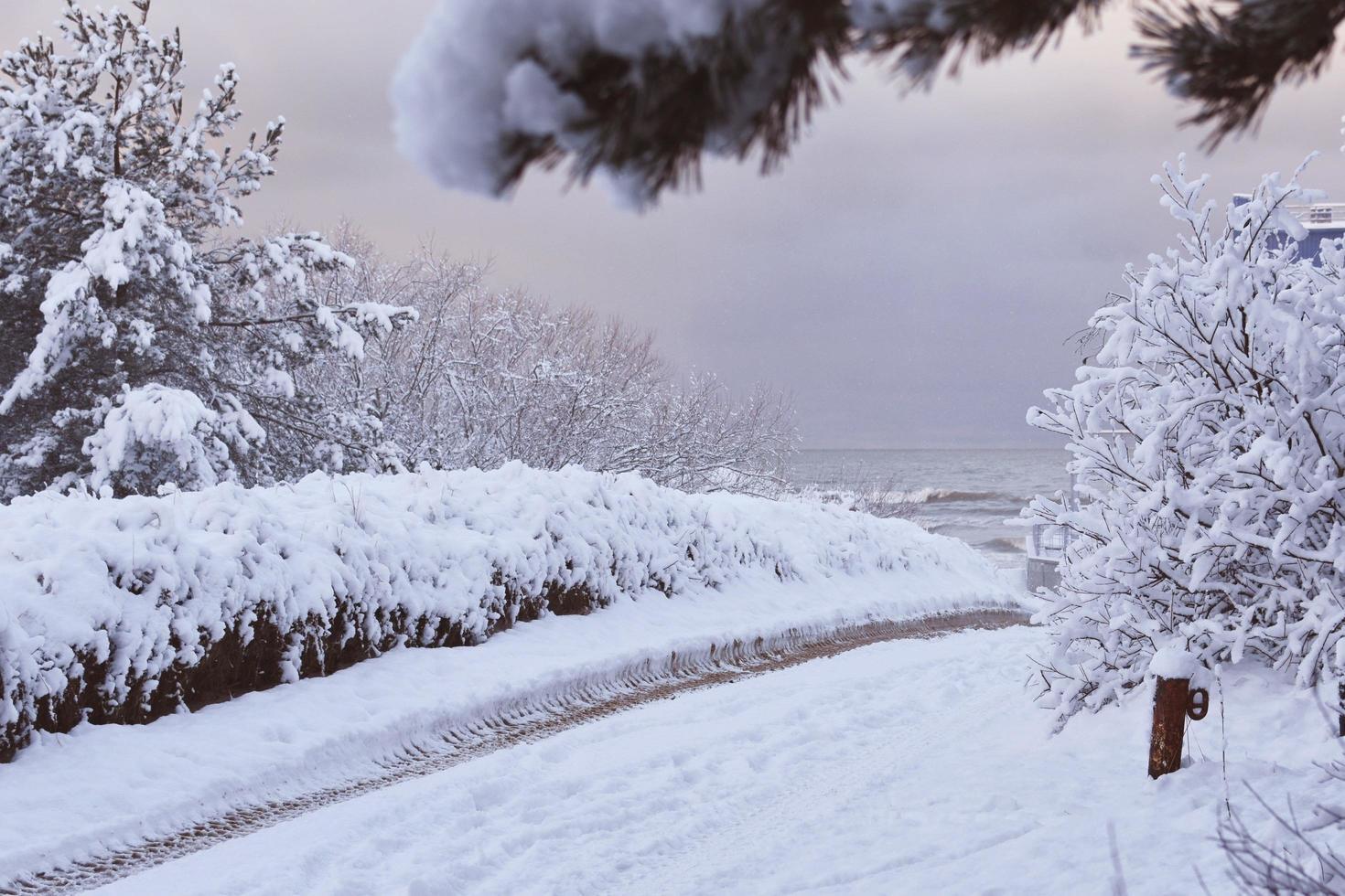 besneeuwd schilderachtig landschap foto